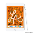 Apple iPad mini 5  4G